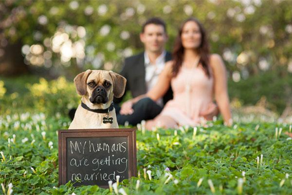 Childhood-Inspired Engagement Photo